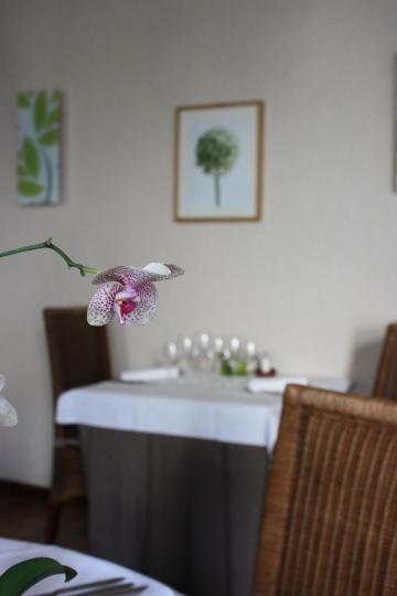 Restaurant Le Clos-Fontaine