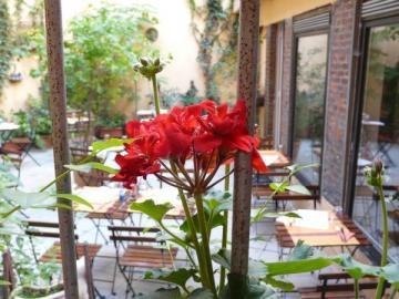 Restaurant Au Soleil du Midi